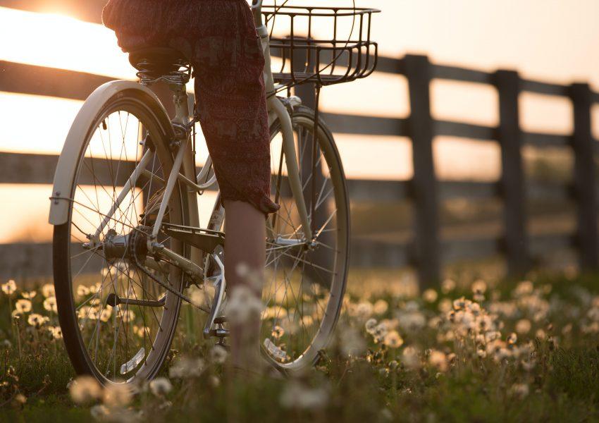 uebler fietsendrager i21